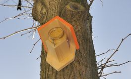 Birdhouse at a tree Royalty Free Stock Image