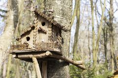 Birdhouse on a tree in the spring. Tree branch with a bird house.  royalty free stock images