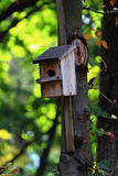 Birdhouse. In a tree waiting for birds stock images