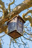 A birdhouse in a tree in wintertime. In Germany Royalty Free Stock Image