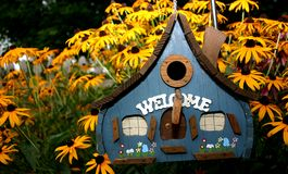 Birdhouse und Black-Eyed Susans Stockfotos