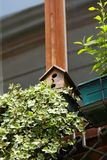Birdhouse on window royalty free stock photography