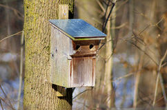 Birdhouse in Winter Royalty Free Stock Photography