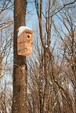 Birdhouse in winter park Stock Images