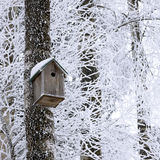 Birdhouse at winter royalty free stock photos