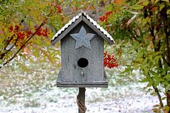 Birdhouse in the Winter stock photography