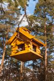 Birdhouse in the woods. Food for small birds. Royalty Free Stock Photography