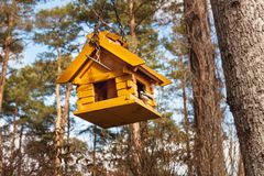 Birdhouse in the woods. Food for small birds. Stock Photo