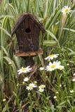 Birdhouse y margaritas fotografía de archivo