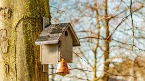 Birdhouse z grubym balowym obwieszeniem na bagażniku drzewo z zamazanym tłem zdjęcia stock