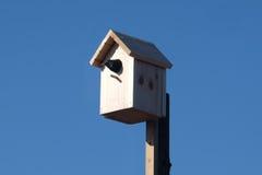 Birdhouse z wróblem Zdjęcia Royalty Free
