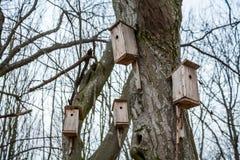 Birdhouses стоковые фото