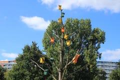 Birdhouses в мертвом дереве стоковое фото rf