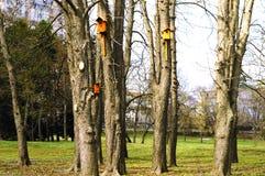 Birdhouses в парке города стоковые изображения rf