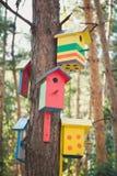 Birdhouses на дереве Стоковые Фотографии RF