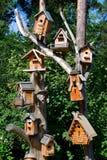 birdhouses Obrazy Royalty Free