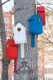 Birdhouses. Several birdhouses on the one tree Stock Photos