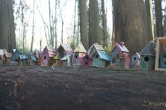 Painted birdhouses in Redwood Park in South Surrey. Painted birdhouses created by children of all ages on a log in Fairy Tale Forest in Redwood Park, Surrey Royalty Free Stock Photography