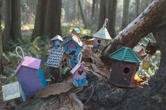 Painted birdhouses in Redwood Park in South Surrey. Painted birdhouses, created by children of all ages, on a fallen tree in Redwood Park, south Surrey Royalty Free Stock Image