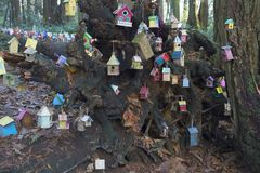 Painted birdhouses in Redwood Park in South Surrey. Birdhouses hanging in Fairy Tale Forest in Redwood Park, Surrey created by children of all ages Stock Photography