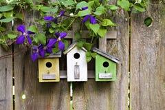 Birdhouses mignons sur la frontière de sécurité en bois Photographie stock libre de droits