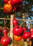 Birdhouses originais Fotos de Stock Royalty Free
