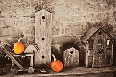 Birdhouses with Pumpkins Royalty Free Stock Images