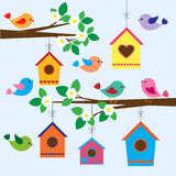 Birdhouses in spring. Colorful birds and birdhouses in spring Royalty Free Stock Photos