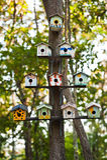 birdhousestree Arkivbilder