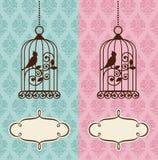 Birdie Στοκ εικόνες με δικαίωμα ελεύθερης χρήσης