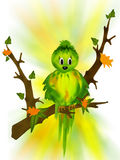 Birdie bird royalty free stock photos
