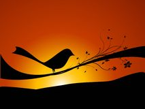 Birdie On Swirls Stock Photo