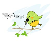 Birdie singer. A funny bird singing happily on the tree Stock Photography