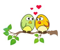 Birdies in love Royalty Free Stock Image