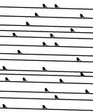 Birdies on a wire. Royalty Free Stock Images