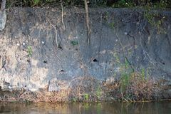 BIRDING HOLES IN THE WALL OF A RIVER BANK. View of numerous birding holes of the Whitefronted Bee-eater bird in Africa stock photography