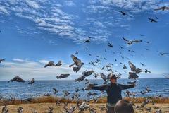 Birdman Fotografia Stock Libera da Diritti
