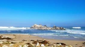 Birdrock mit zusammenstoßenden Wellen stock footage