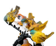 Birds. Beauty full birds sitting on the stem Royalty Free Stock Image