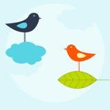 Birds vector illustration