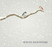 Birds. Two beautiful birds sitting on branch. Winter background. Vector illustration Royalty Free Stock Photos
