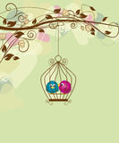 Birds. Two colorful birds in a cage Stock Photos