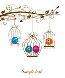 Birds. Colorful birds in a cage on a white background Royalty Free Stock Photos