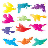 Birds. Hand drawn illustration of birds in various colours - vector Royalty Free Stock Image