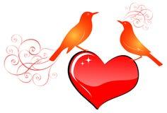 Birds. Illustration of love birds standing the top of the heart vector illustration