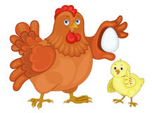 Birds. The hen and chicken an illustration on a white background Royalty Free Stock Photography