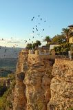 Birds above the cliffs - Ronda. Birds above the cliffs of the El Tajo Gorge - Ronda, Andalusia, Spain royalty free stock photo