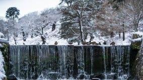Birds Above Waterfalls stock photos