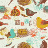 Birds And Nests Background