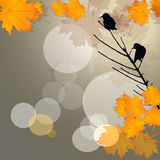 Birds in autumn background Royalty Free Stock Photography